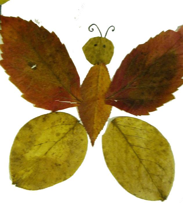 Поделки из листьев лёгкие 61
